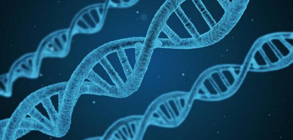 DNAの螺旋構造