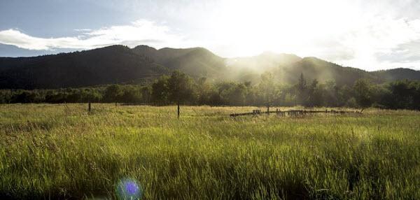 大自然で育まれたプラセンタサプリの産地